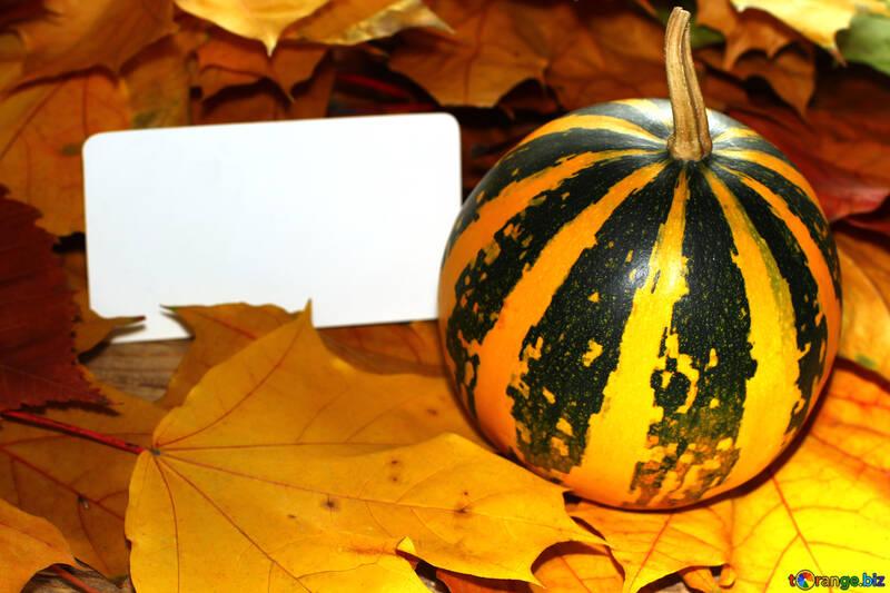 Hintergrund-Einladung für Halloween mit Kürbis №35188