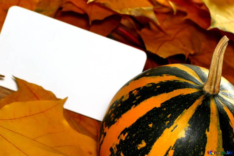 Invitación de halloween de imagen de fondo №35190