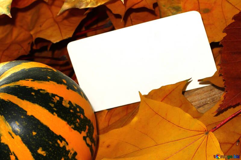Une invitation vierge pour halloween №35191