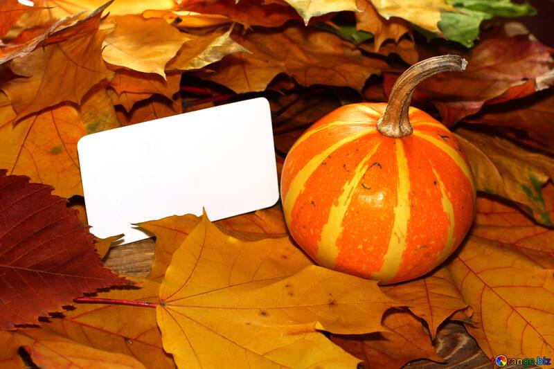 Tarjeta de invitación para halloween №35193