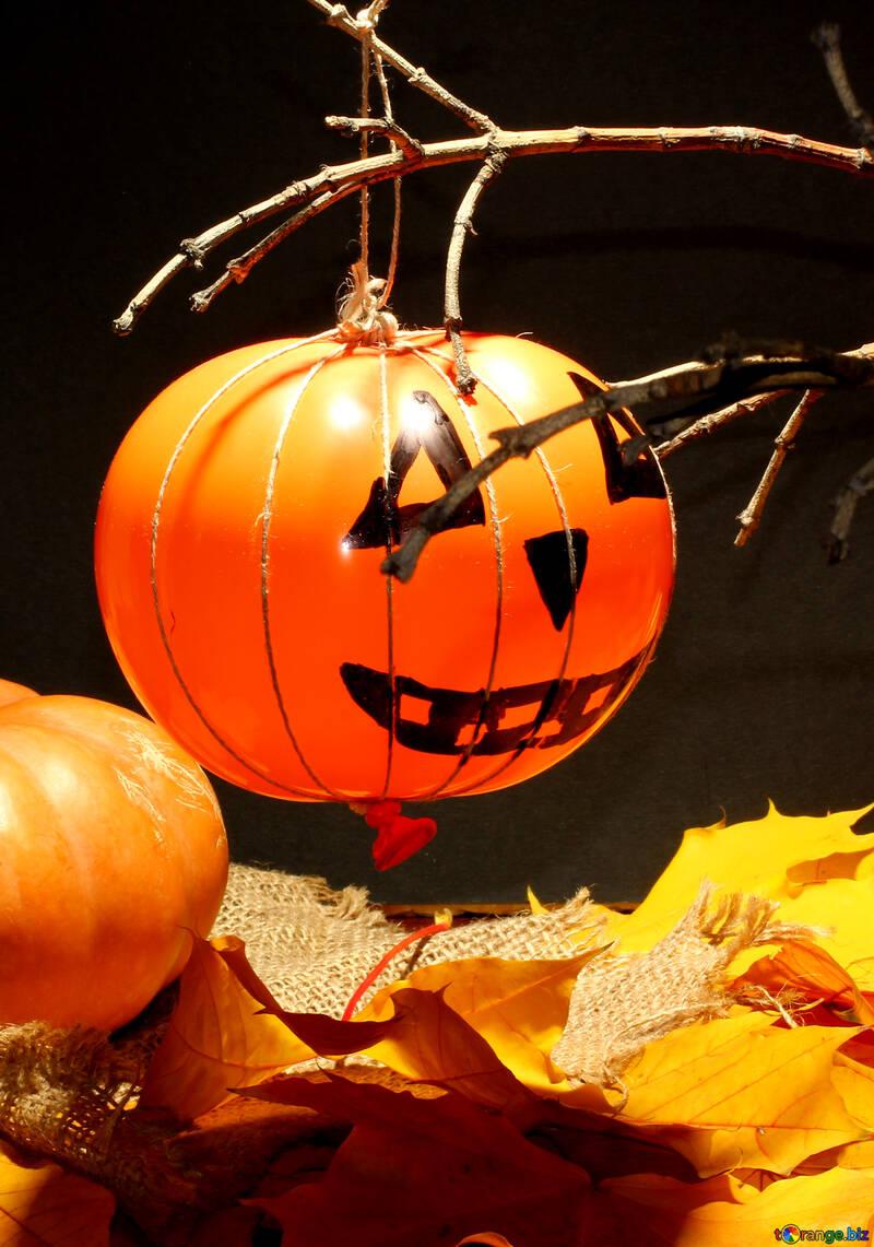 Halloween Bilder №35408