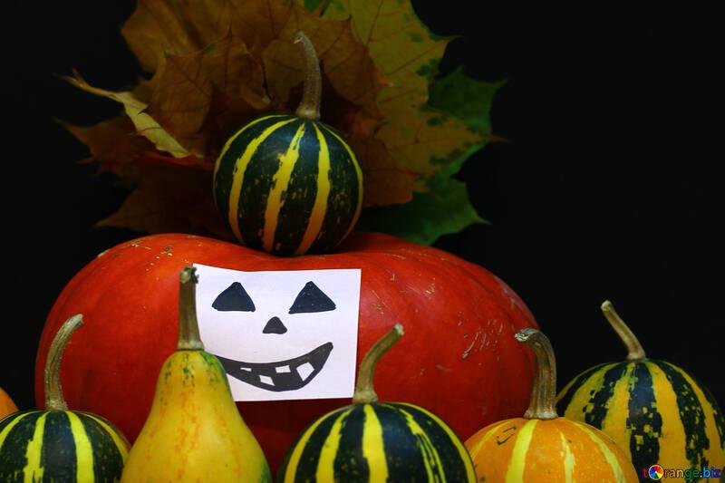 Calabaza sobre fondo oscuro para Halloween №35137