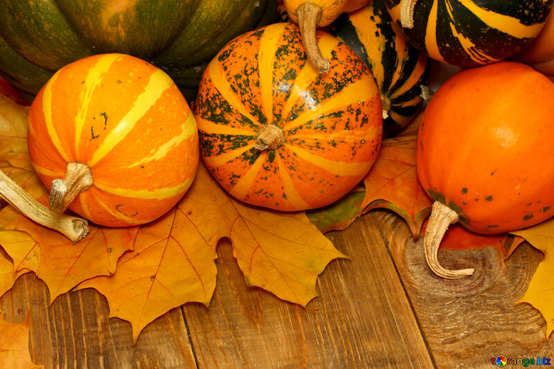 Autumn background with pumpkins №35219