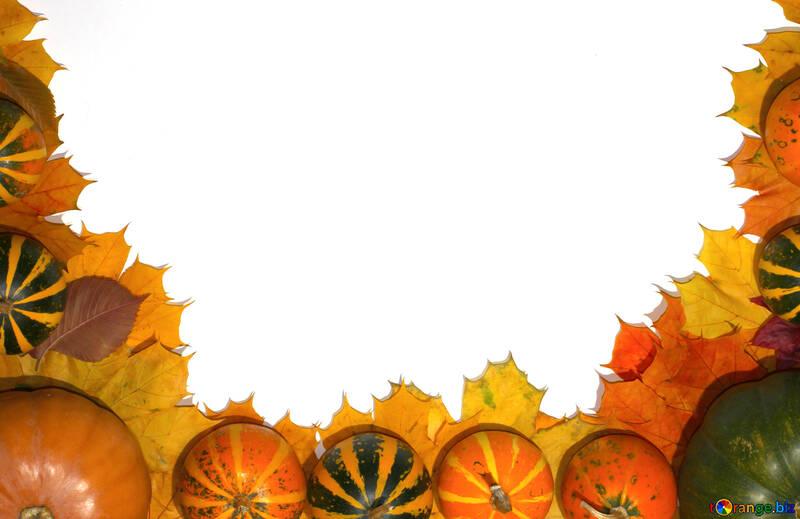 Осенний фон №35179