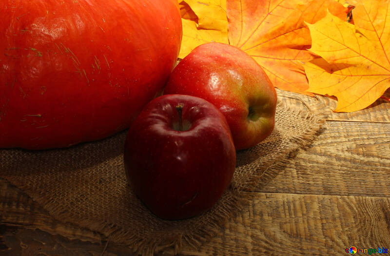 Autumn vitamins №35165