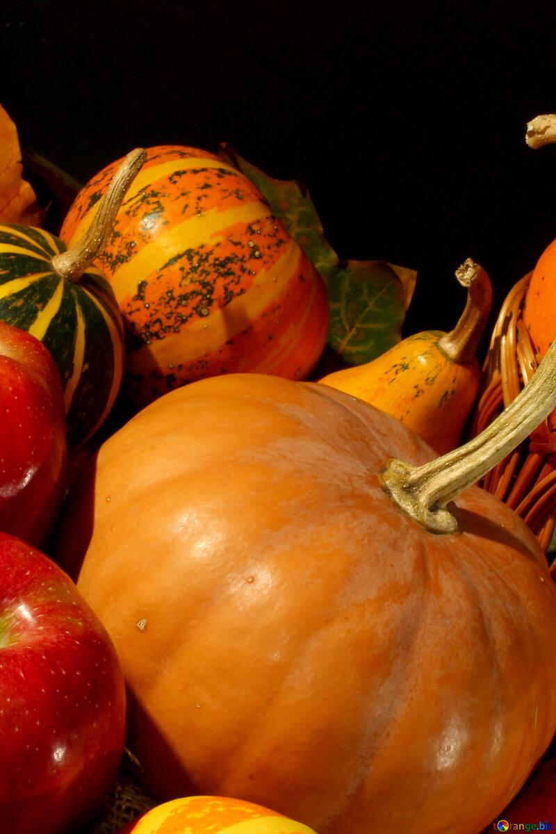Vitamins autumn №35329