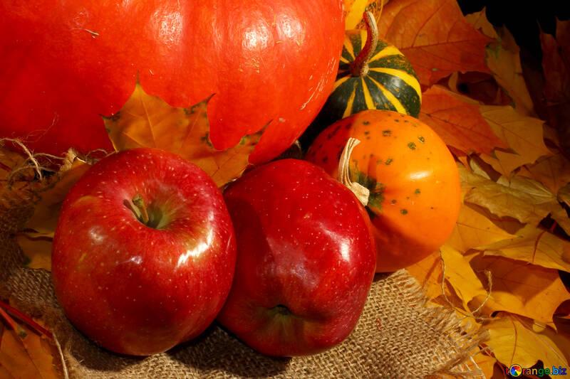 Autumn harvest of vitamins №35338