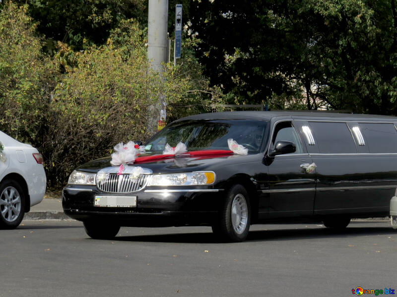 Wedding Decorations For Cars Wedding Limousine Tuning 35764
