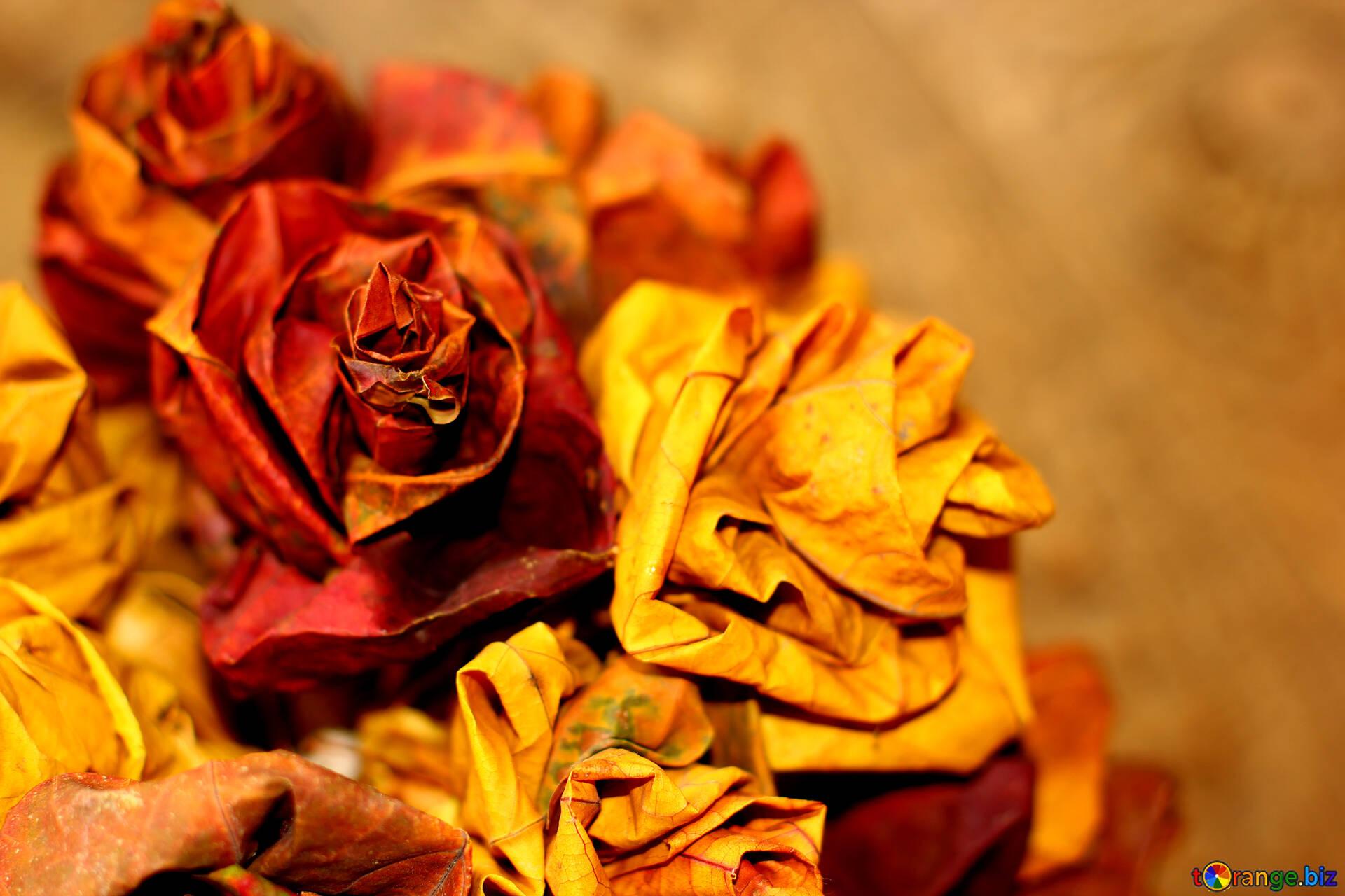 葉の花束 明るい秋のデスクトップの壁紙デスクトップ 枝葉 36027