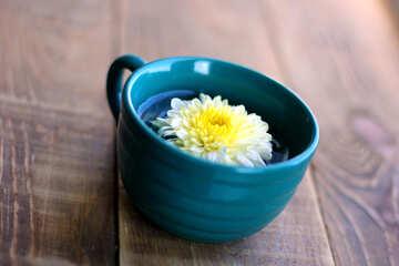 Petite bouquet №36987