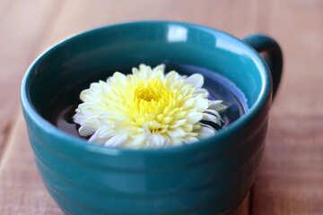La decorazione della tavola tazza di fiori №36985
