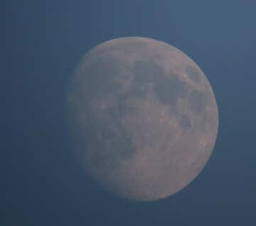Луна вечером №36677