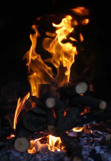 Wood burning furnace №36682
