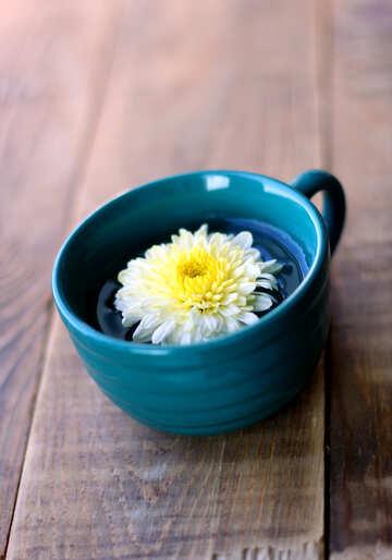 Tè fiore №36986