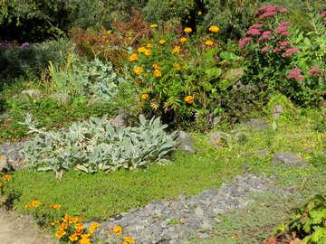 Flower garden №36003
