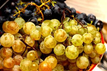 Grapes №36286