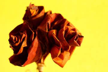 Autumn card №36068