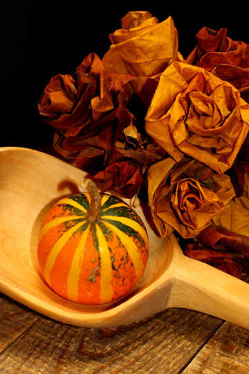 Autumn picture №36019