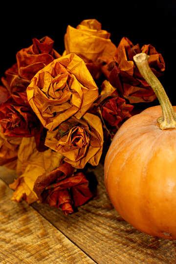 Pumpkin in the fall №36021