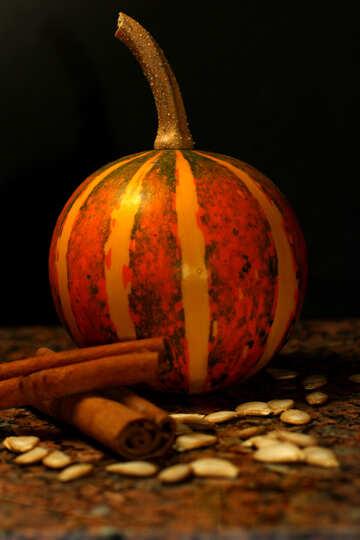Beautiful picture of pumpkin №36050