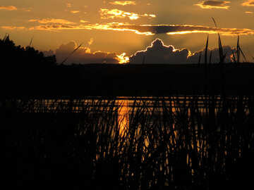 Noche en el lago №36381