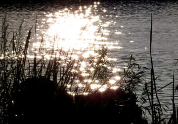 The Sun is reflected in the water №36457