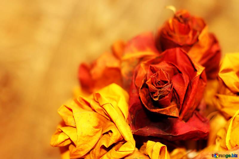 Herbstblumen Hintergrund Für Die Herbst Gedichte Laub 36028