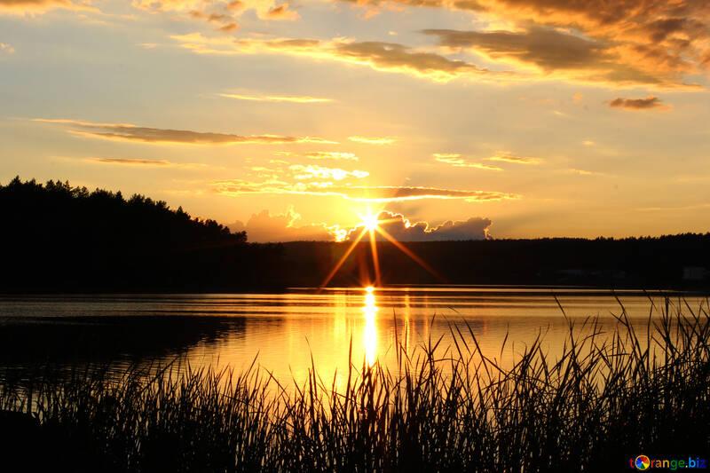 Evening landscape №36480