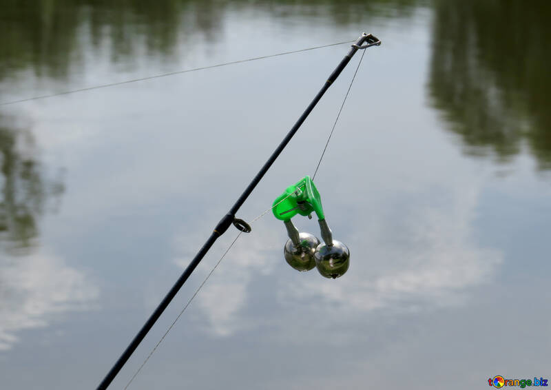 Fishing sport fishing fish № 36174