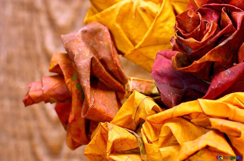 Wunderschönen Herbstfarben abgefallener Blätter №36034