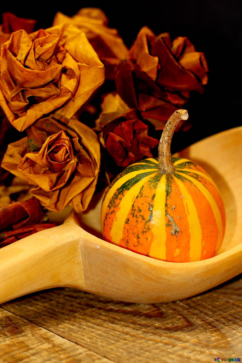 Autumn picture with pumpkin and spoon №36020