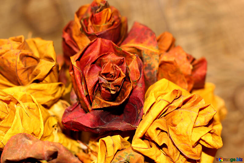 Children`s crafts of autumn leaves №36029