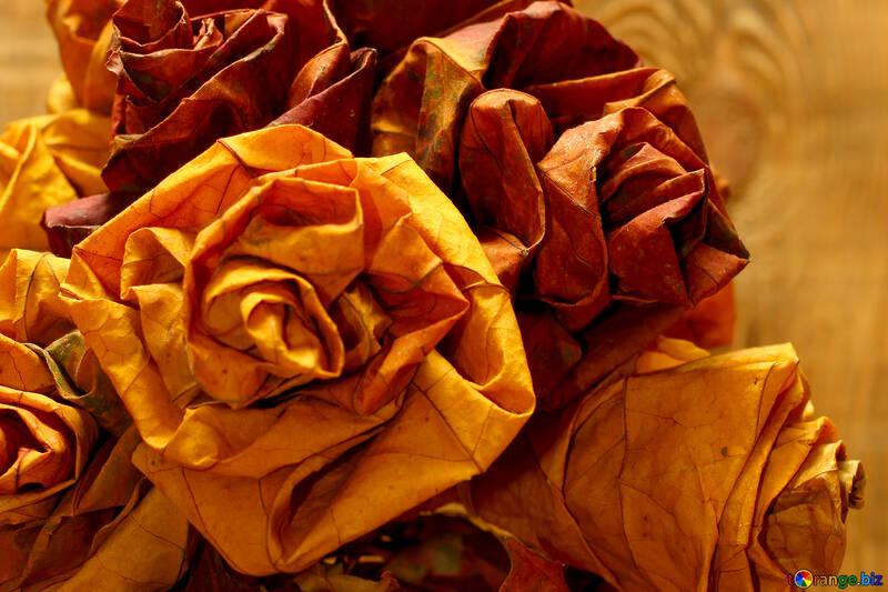 Flowers of dry leaves №36037