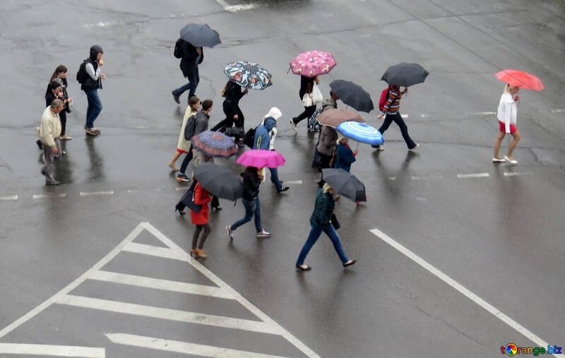 Le persone sono la via d`uscita sotto la pioggia №36191