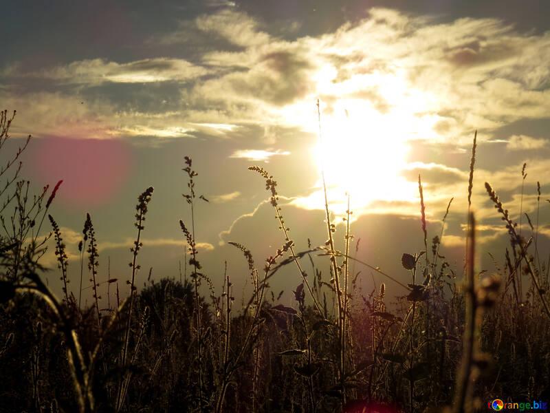 Fondos de pantalla puesta de sol №36722