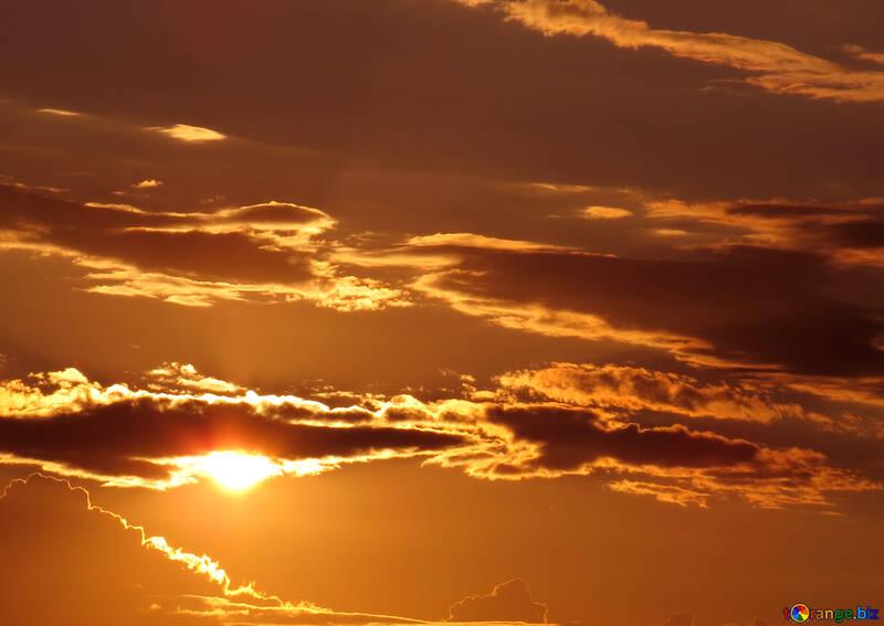 Cielo dorado №36391