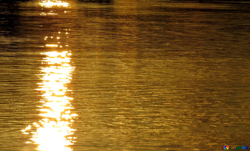 Golden water №36402