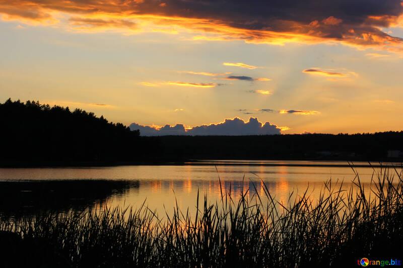 Sky at sunset №36474