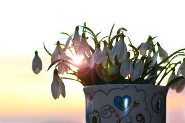 Spring bouquet №37972