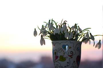 Frühling Blumen Blumenstrauß im cup №37971