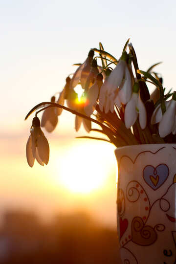 Spring bouquet №37980