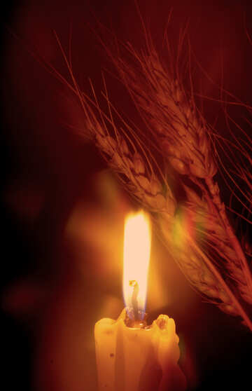 Víctimas del Holodomor №37790