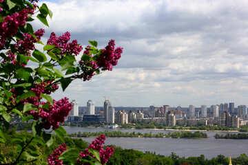 Spring city №37636