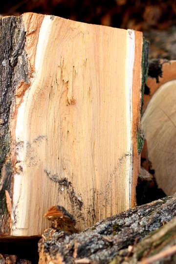 Hardwood firewood №37209
