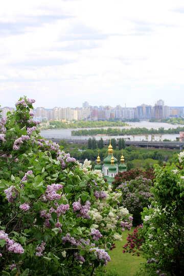 Panorama di Kiev lilla №37369