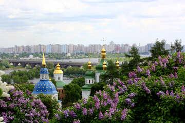 Spring in Kiev №37442