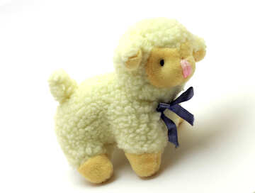 The sheep №37153