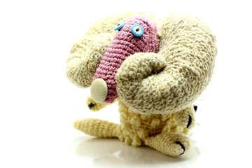 Sheep №37169