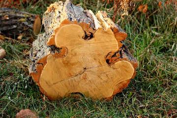 Cut the curve wood №37211