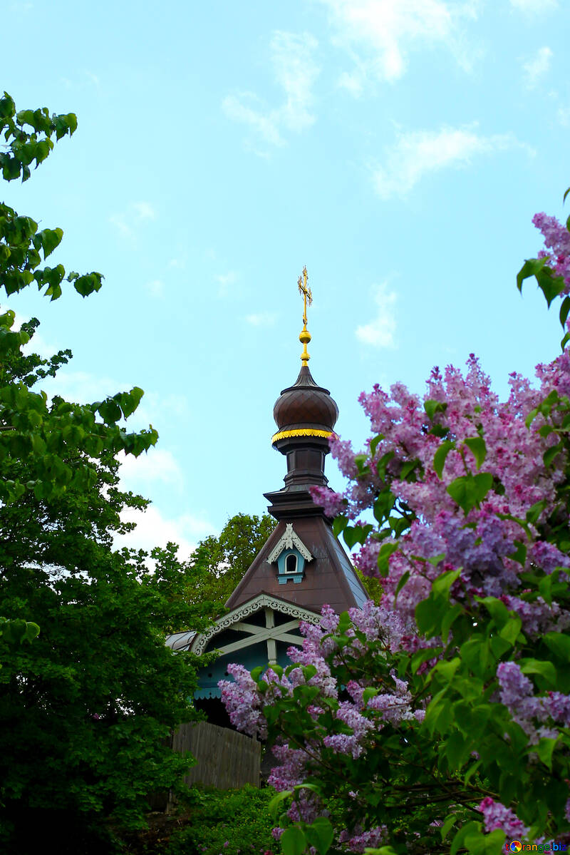 The church amid the bushes of lilac №37591